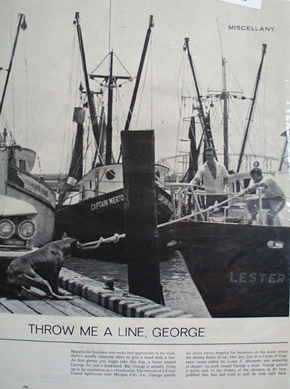 Throw Me A Line George Dog Ad 1964