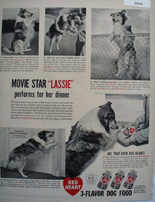 Red Heart Lassie Performs For Dinner Ad