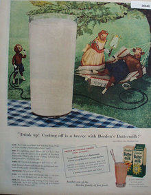 Bordens Butter Milk 1956 Ad