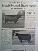 Scotch Topped Short Horn Sale 1902 Ad
