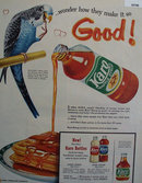 Karo Waffle Syrup Parrot 1959 Ad