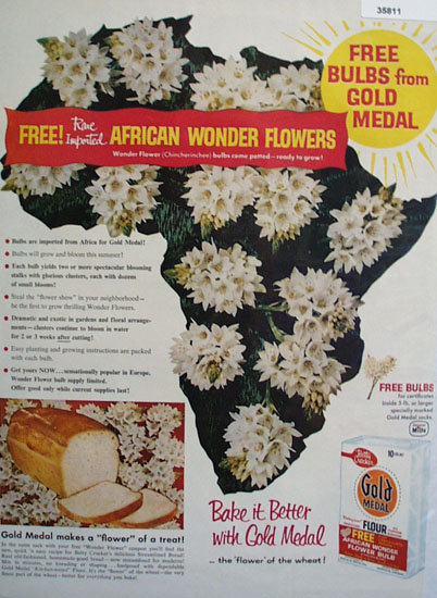 Gold Medal Flour African Flowers 1958 Ad