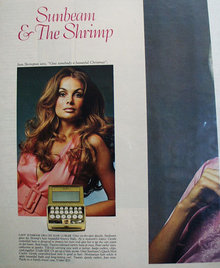 Sunbeam Hair Appliances 1970 Ad