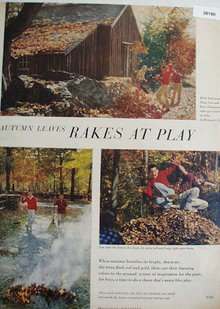 Rakes At Play 1959 Fall Pictures