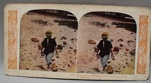 World Series Stereoview card #188 Hawaiian Wo