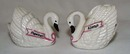Graceful Swans S&P Shakers