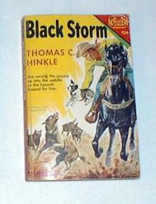 Black Storm by Hinkle