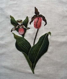 Skunk Cabbage raised needlework picture