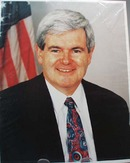 Newt Gingrich Photo House Speaker