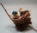Flower pick bird nest.