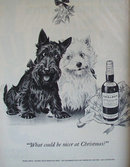 Black And White Whiskey 1951 Ad under the mistletoe