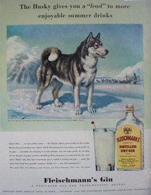 Fleischmanns Gin 1940 Ad