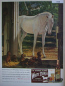 White Horse Blended Scotch Whisky 1946 Ad with puppies
