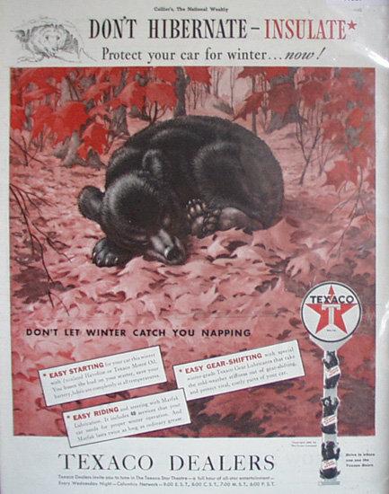 Texaco Dealers Don't Hibernate Insulate 1939 Ad