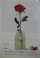 Red Roses Cologne by Yardley 1960 Ad