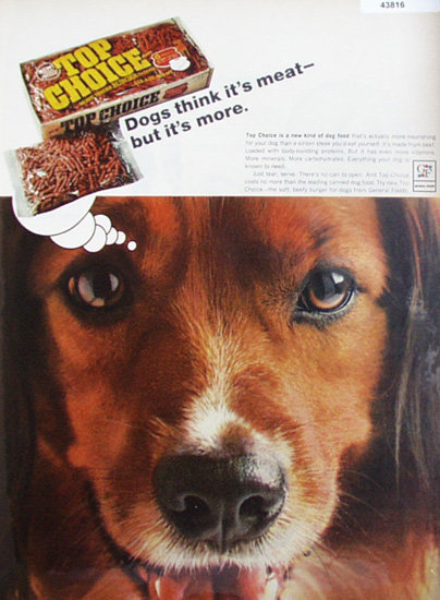 Top Choice Dog Food 1967 Ad.