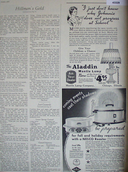 Aladdin Lamp And Nesco Roaster 1935 Ad