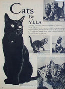 Cats By Ylla 1950 Article