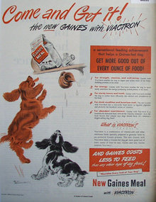 Gaines Meal With Viactron 1948 Ad