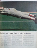 Doug Rader Houston Astros 1972 Article