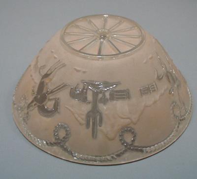 Rodeo Cowboy's, cactus lampshade