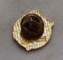Texas Lions pin, Features the state of Texas