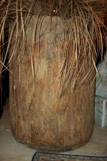 Tree Trunk Planter