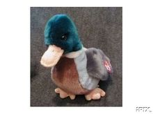 JAKE Ty Beanie Buddy Mallard DUCK