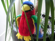 JABBER Ty Beanie BUDDY Colorful PARROT Plush