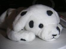 Ty SPARKY Beanie Dalmatian w/Dotty Tush Tag ODDITY~ Rare Error~Mint