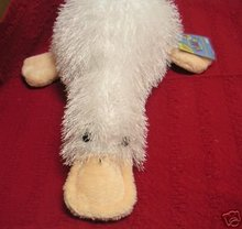 WEBKINZ GOOGLES Platypus~Interactive Pet ~Sealed Tags~Secret Code~New