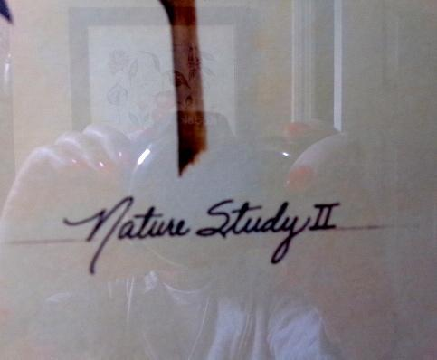 Nature Study II