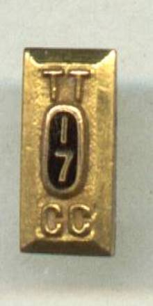 Fraternal/TT 17 CC Pin
