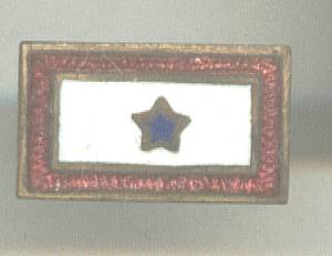 Service Pin(s)/WWII Production Award Star Bar Pin