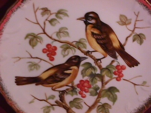 Norleans Oriole & Wild Cherry Display Plate