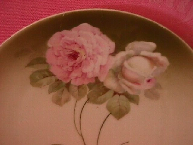 Bavaria Porcelain Display Plate (Roses)