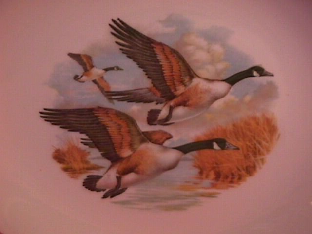 Royal Falcon Ware Game Birds Lunch Plate (Canadian Honkers in Flight)