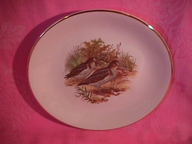Royal Falcon Ware Game Birds Lunch Plate (Woodcock)