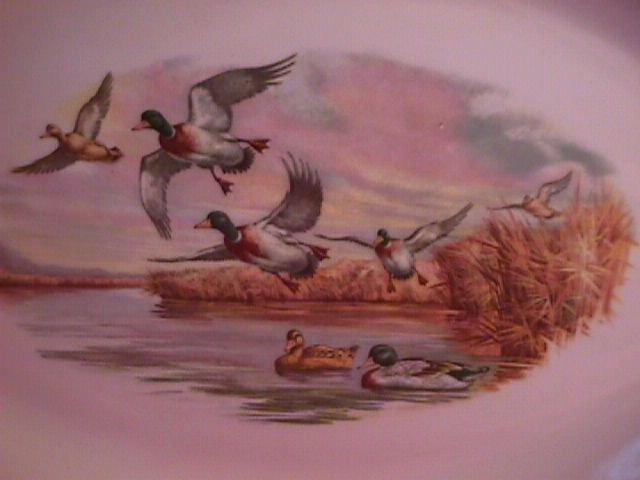Lafisa China Gamebirds
