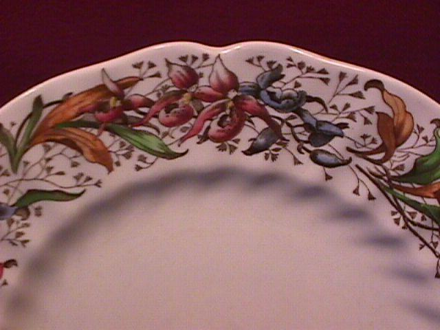 Royal Doulton China (Tintern) Dinner Plate