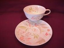 Easterling Fine China (Forever Spring) Cup & Saucer