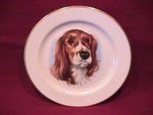 Pickard Fine China (Irish Setter) Dog Art Plate