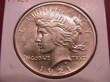 Peace Type Silver Dollar  1921  Mint State 60-63 Condition