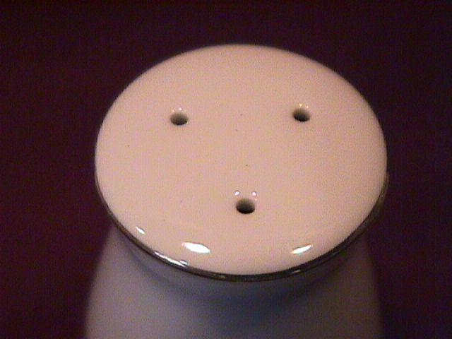 Noritake Fine China (Warrington #6872) Salt Shaker