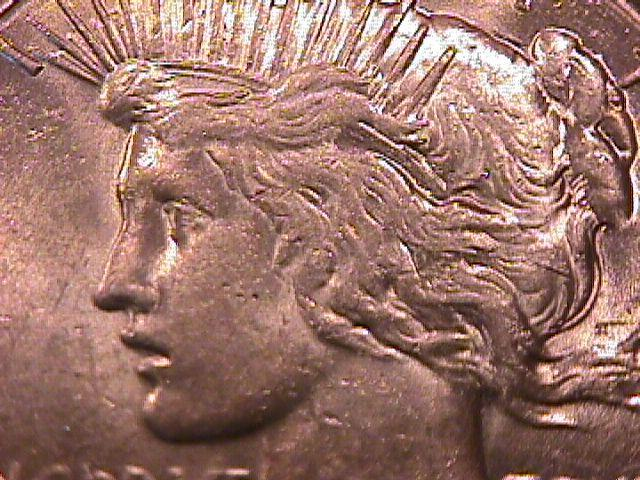 Peace Type Silver Dollar 1927 MS #-64 Condition