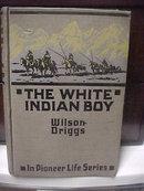 A Wilson Driggs Book