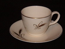 Salem China Royal Joci Cup and Saucer