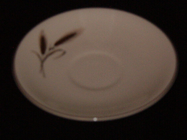 Salem China Royal Joci Saucer