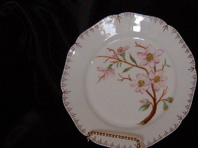 Haviland & Co Limoges Plate