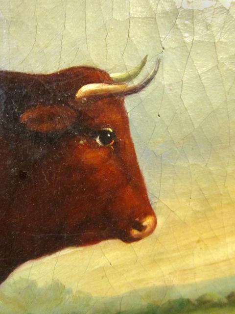 19thC BULL PAINTING / ENGLISH SCHOOL ANIMAL PORTRAIT